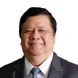 Ferdinand Constantino (CFO at San Miguel Corporation)